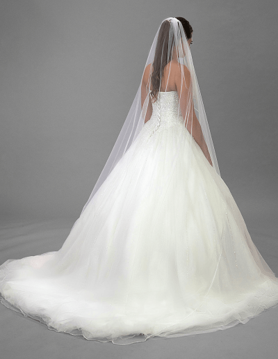 Willow wedding dress back and veil